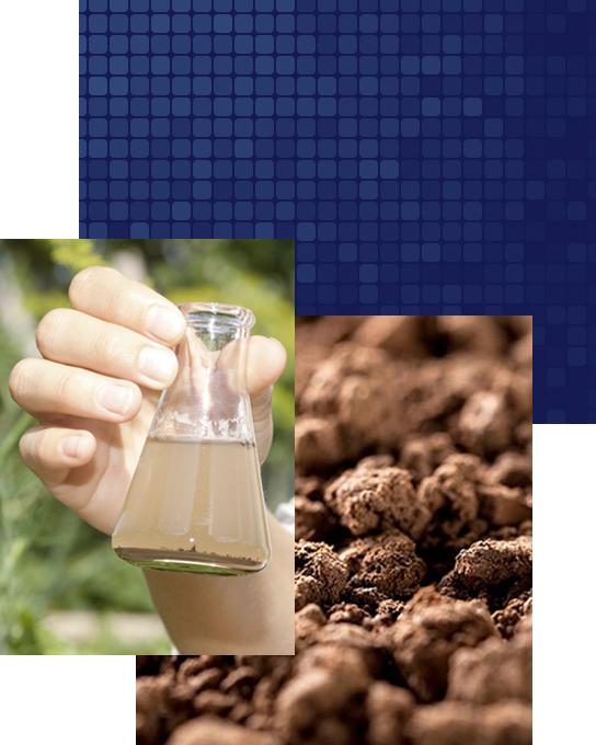 analisi ambientali